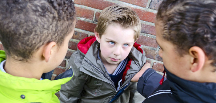 School Bullying and Violence - How Safe is Your School and What Can You Do