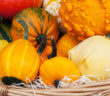 Fabulous-Fall-Foods