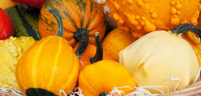 Fabulous Fall Fare: 10 Fall Foods Your Family Should Try by @Deb_Lowther