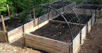 Cucumber Trellis How to_Raised Bed with Trellis