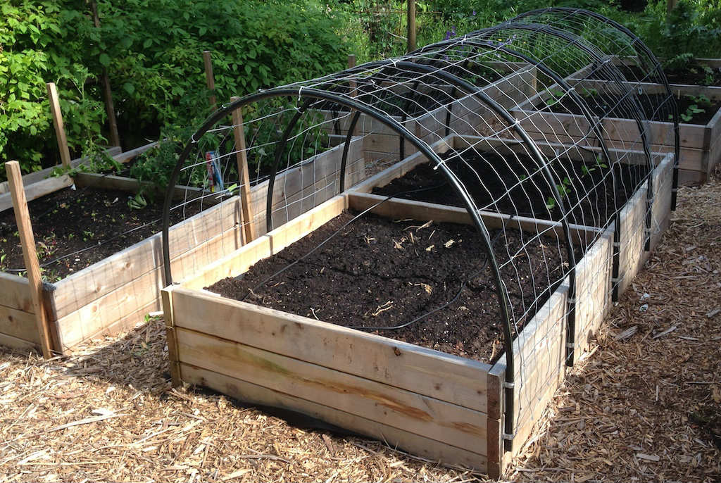 Diy garden trellis how to build a cucumber trellis for for Diy patio bed