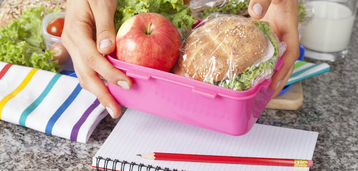 Tired of Boomerang Lunches - Healthy Lunches That Kids Will Eat via http://momeomagazine.com